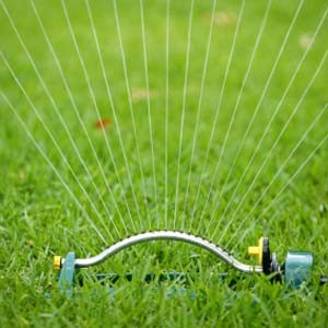 Автоматический полив газона автополив газона