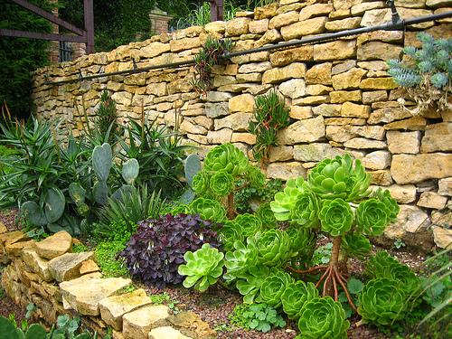Дизайн своими руками на садовом участке фото